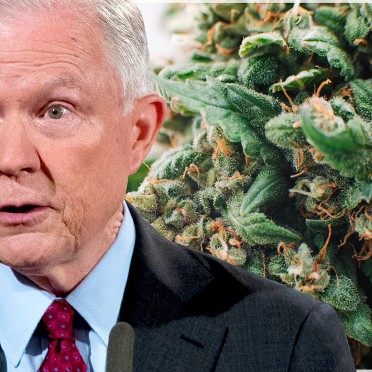 Jeff Sessions sued by 12-year-old girl to legalize medical marijuana nationwide