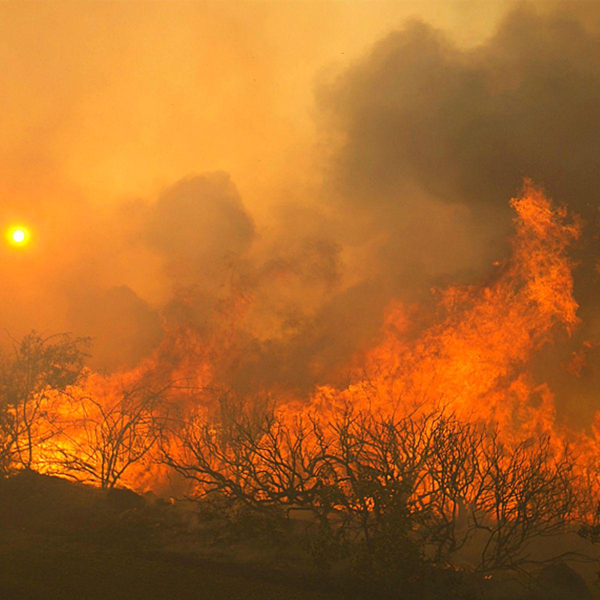 Elizabeth Warren's new climate plan uses wildfire wisdom from tribes