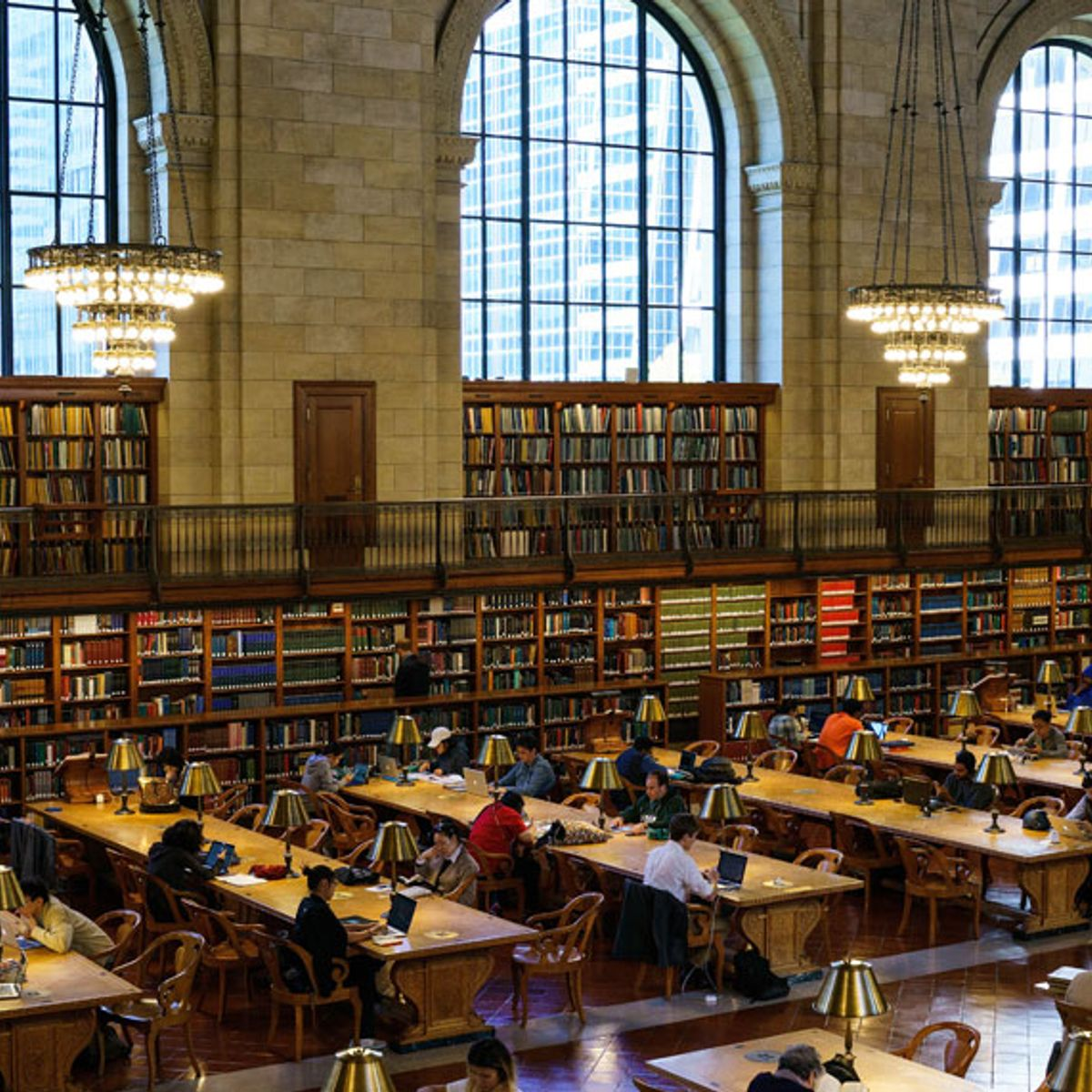 As the welfare state decays, public libraries become sites of social trauma