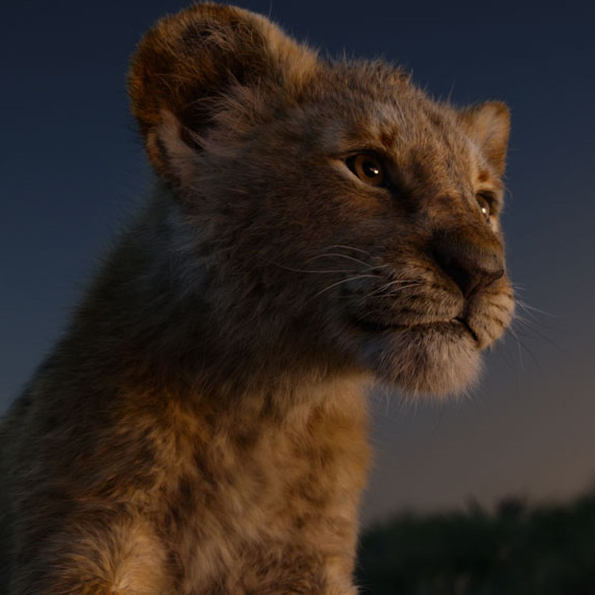 Heres The One Real Shot In Disneys The Lion King Remake