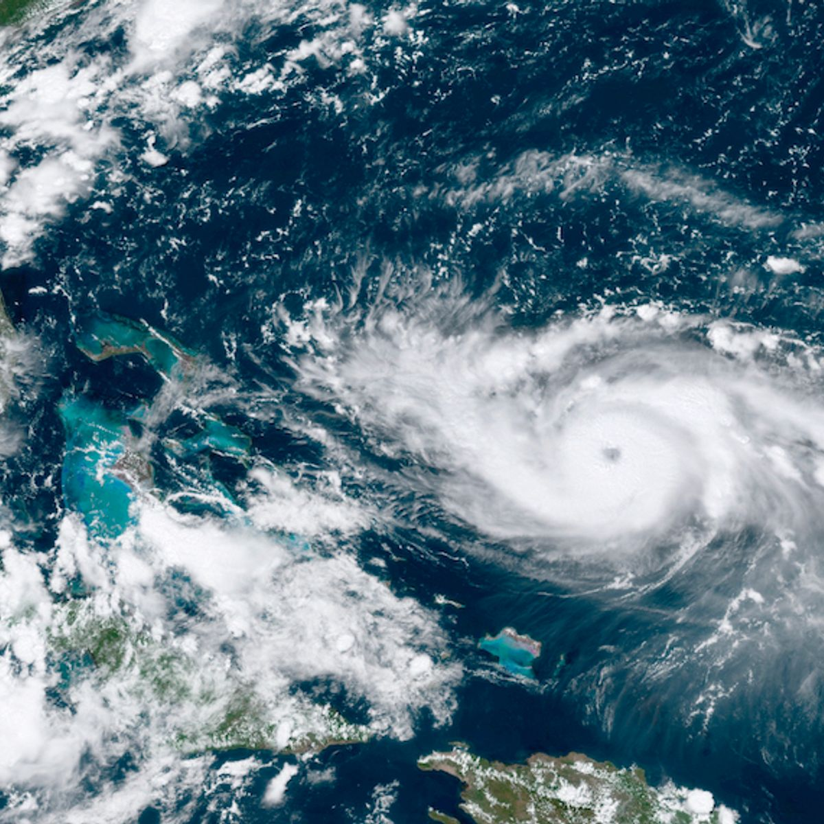"""""""Hurricane truthers"""": Bonkers conspiracies are putting lives in danger"""