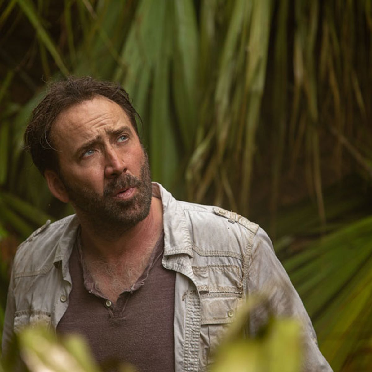 Nicolas Cage News Articles Stories Amp Trends For Today