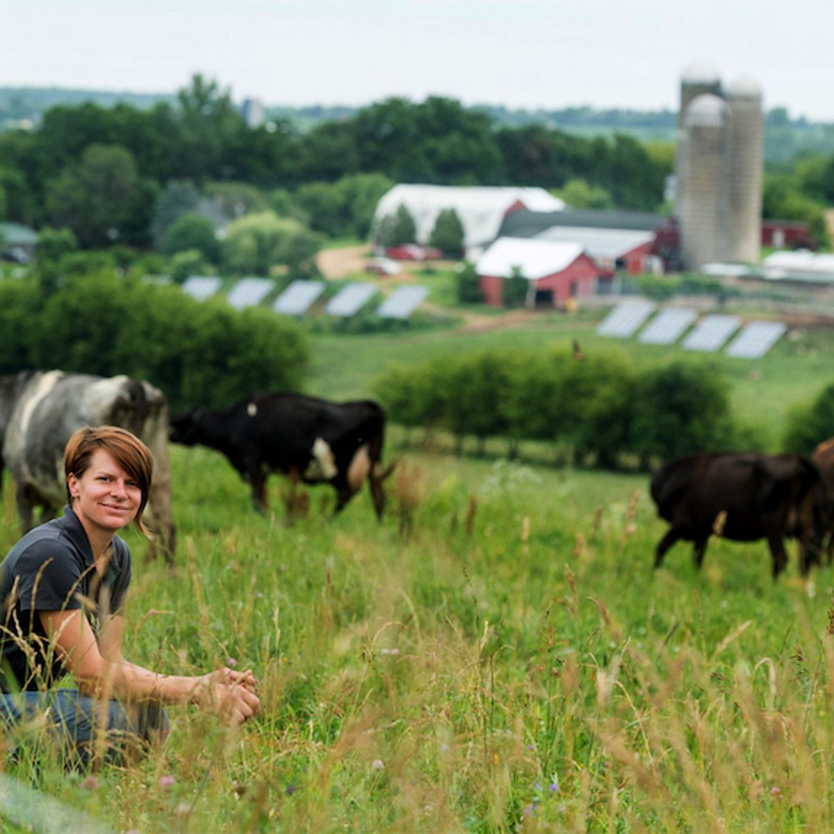 On-farm solar grows as farmers see economic rewards — and risks