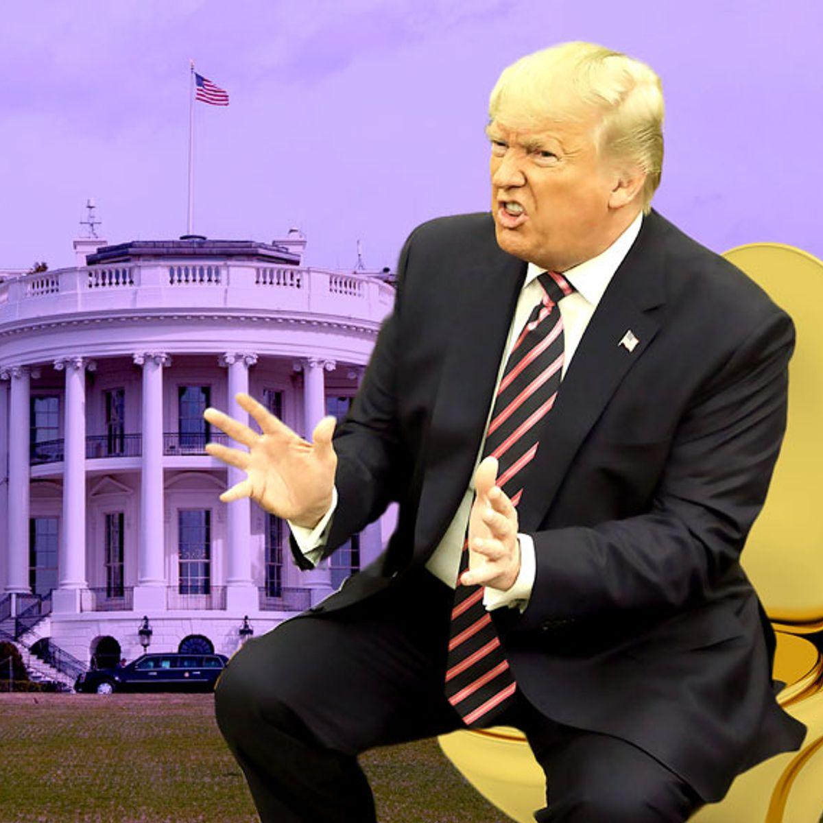 Royal flush: Understanding the power of Donald Trump's toilet politics