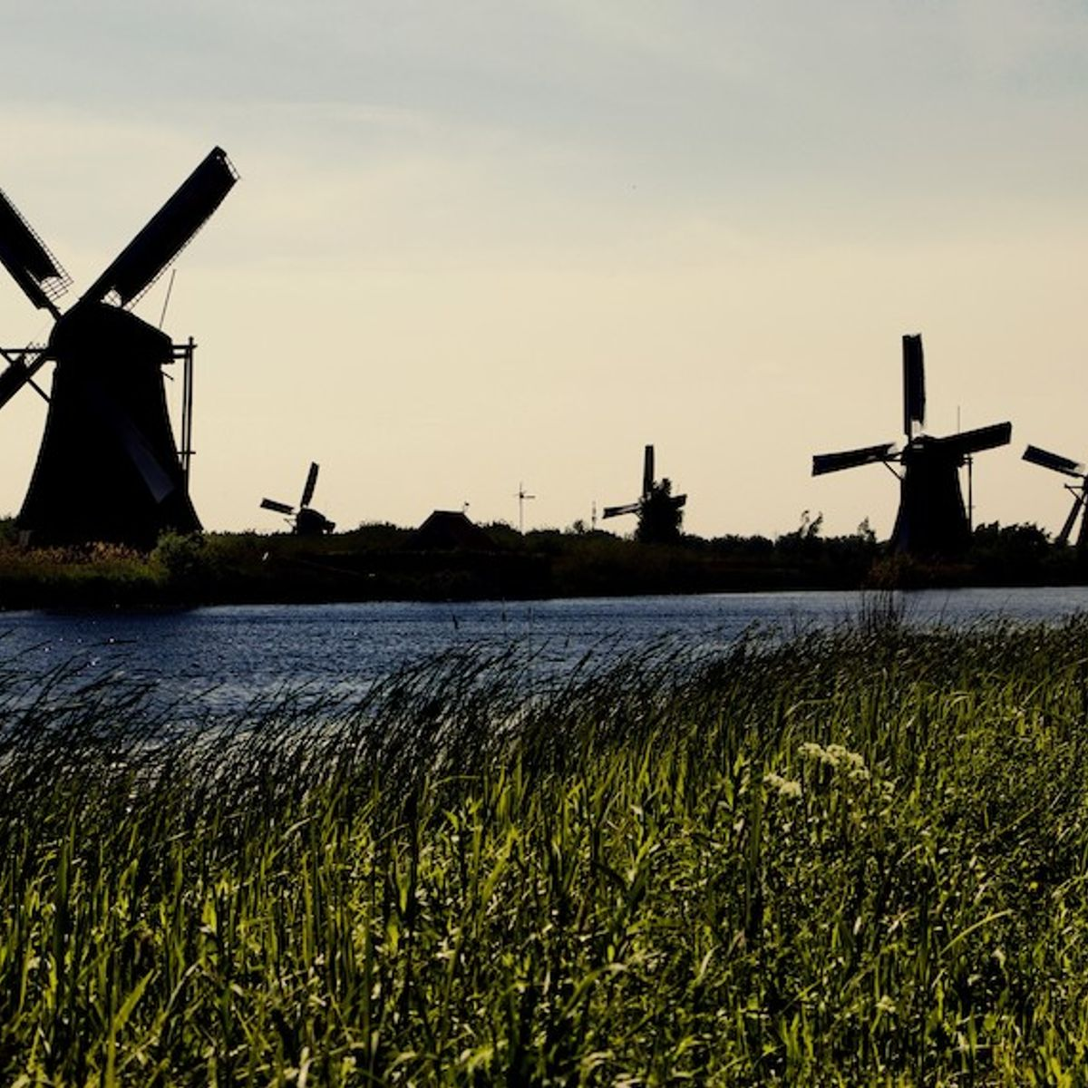 Blowing in the wind: Why the Netherlands is sinking