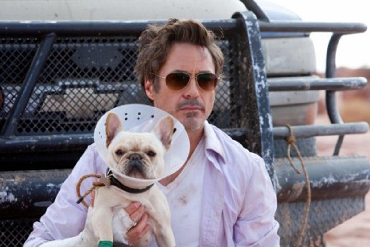 """Robert Downey, Jr. in """"Due Date"""""""
