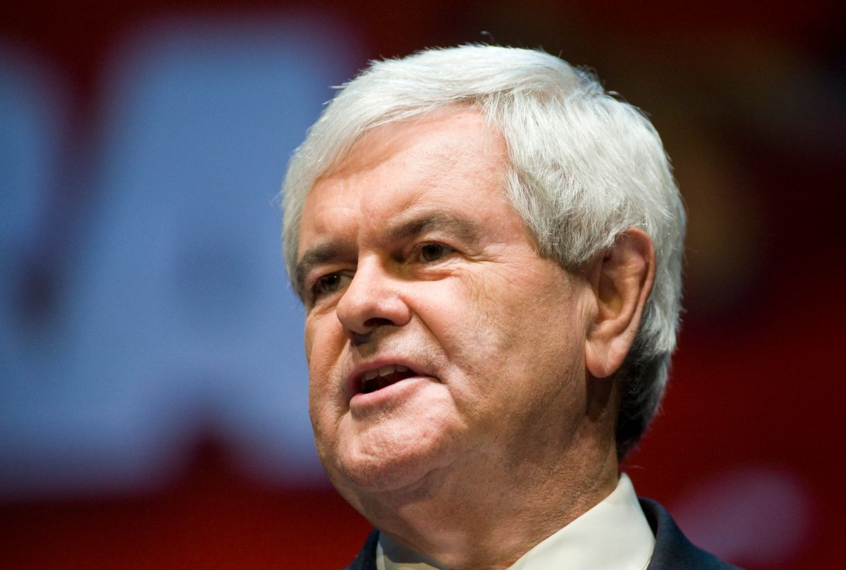 Former Speaker of the House Newt Gingrich speaks during the National Rifle Association's 139th annual meeting in Charlotte, North Carolina on May 15, 2010. REUTERS/Chris Keane (UNITED STATES - Tags: POLITICS) (Reuters)