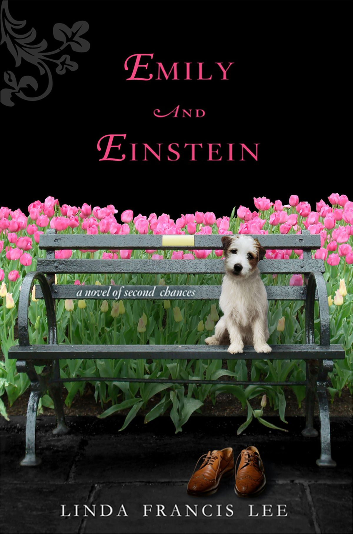 """""""Emily and Einstein"""" by Linda Francis Lee"""
