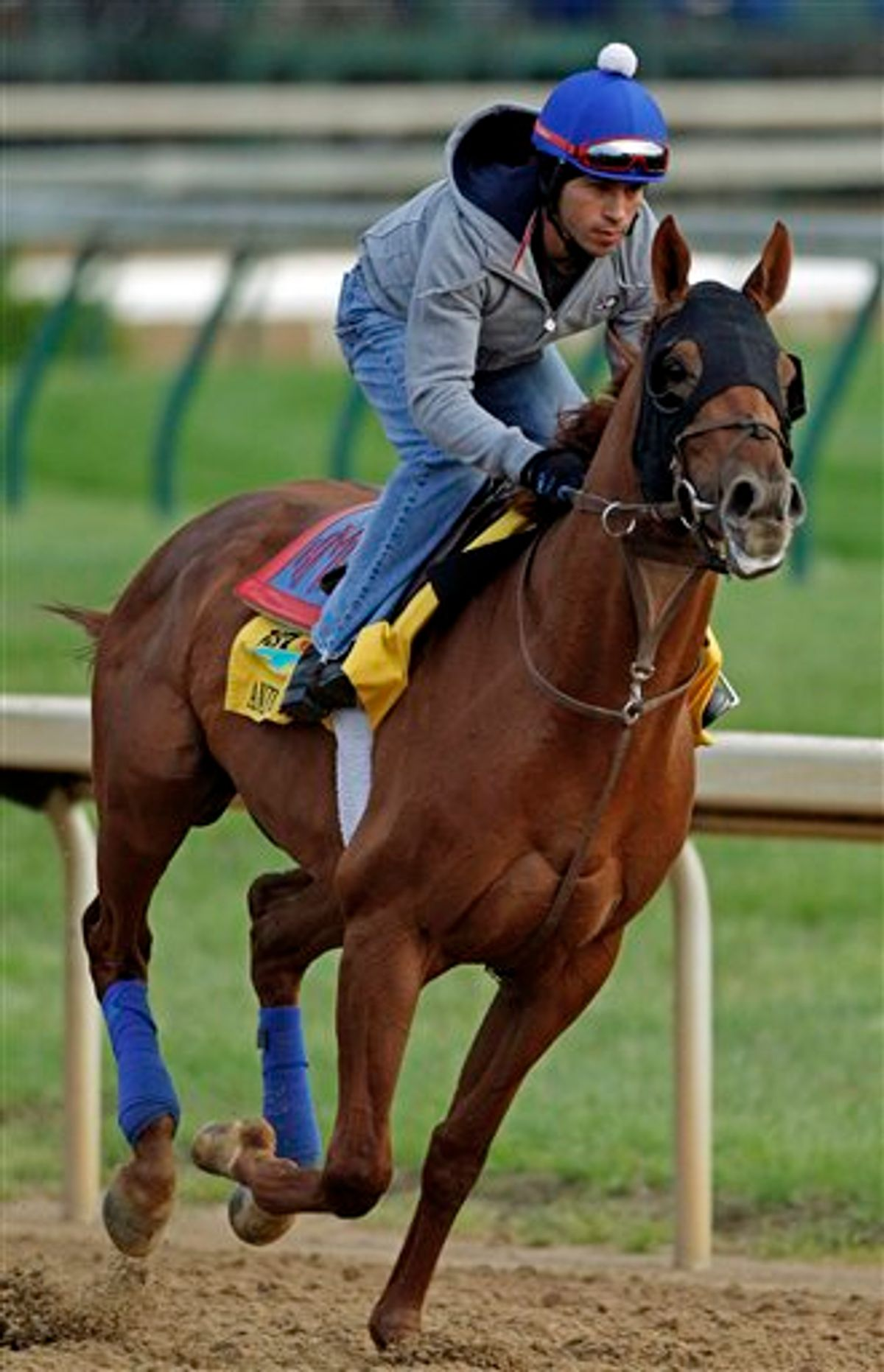 Exercise rider James Slater takes Kentucky Derby entrant Animal Kingdom for a workout at Churchill Downs Friday, May 6, 2011, in Louisville, Ky. (AP Photo/Denis Paquin) (AP)