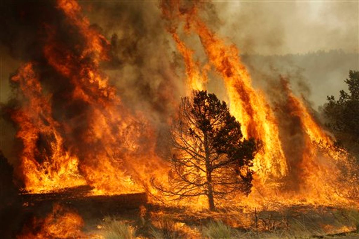 A forest burns during a backburn operation to fight the Wallow Fire in Nutrioso, Ariz., Friday, June 10, 2011.    A massive wildfire in eastern Arizona that has claimed more than 30 homes and forced nearly than 10,000 people to evacuate is likely to spread into New Mexico soon, threatening more towns and possibly endangering two major power lines that bring electricity from Arizona to West Texas.(AP Photo/Marcio Jose Sanchez)  (AP)