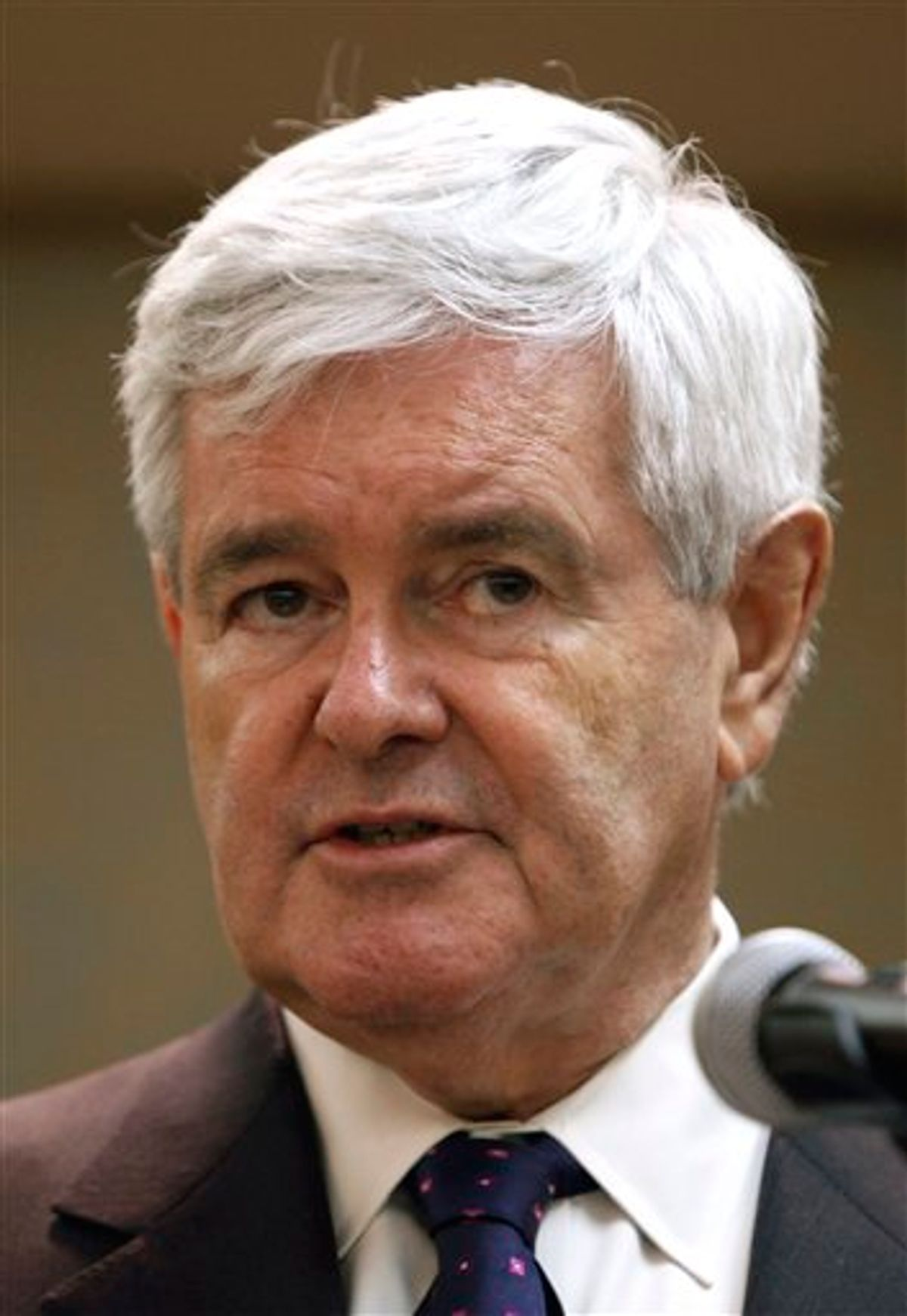 FILE - In this May 16, 2011 file photo, former House Speaker Newt Gingrich speaks during the Kiwanis Club luncheon in Dubuque, Iowa. For Republicans who once supported combating global warming, the race for the presidency is already getting hot.  (AP Photo/Charlie Neibergall, File) (AP)