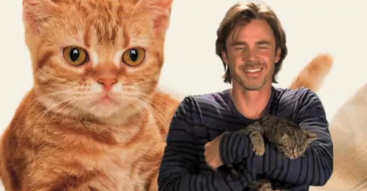 Sam Trammell loves kittens!