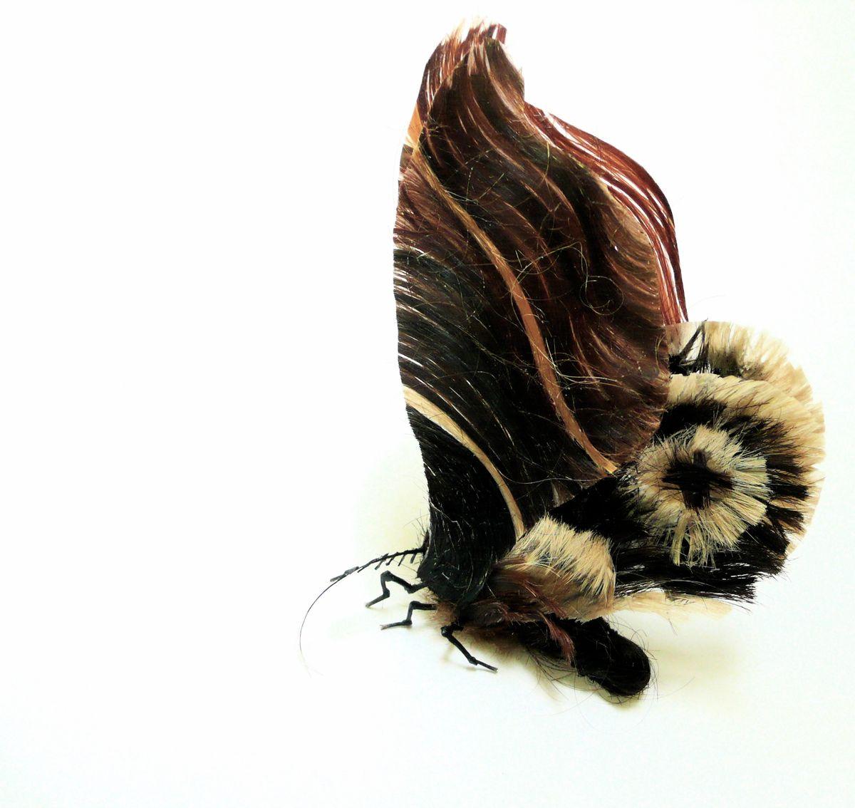 A moth made from human hair and glue. (Artist: Adrienne Antonson)