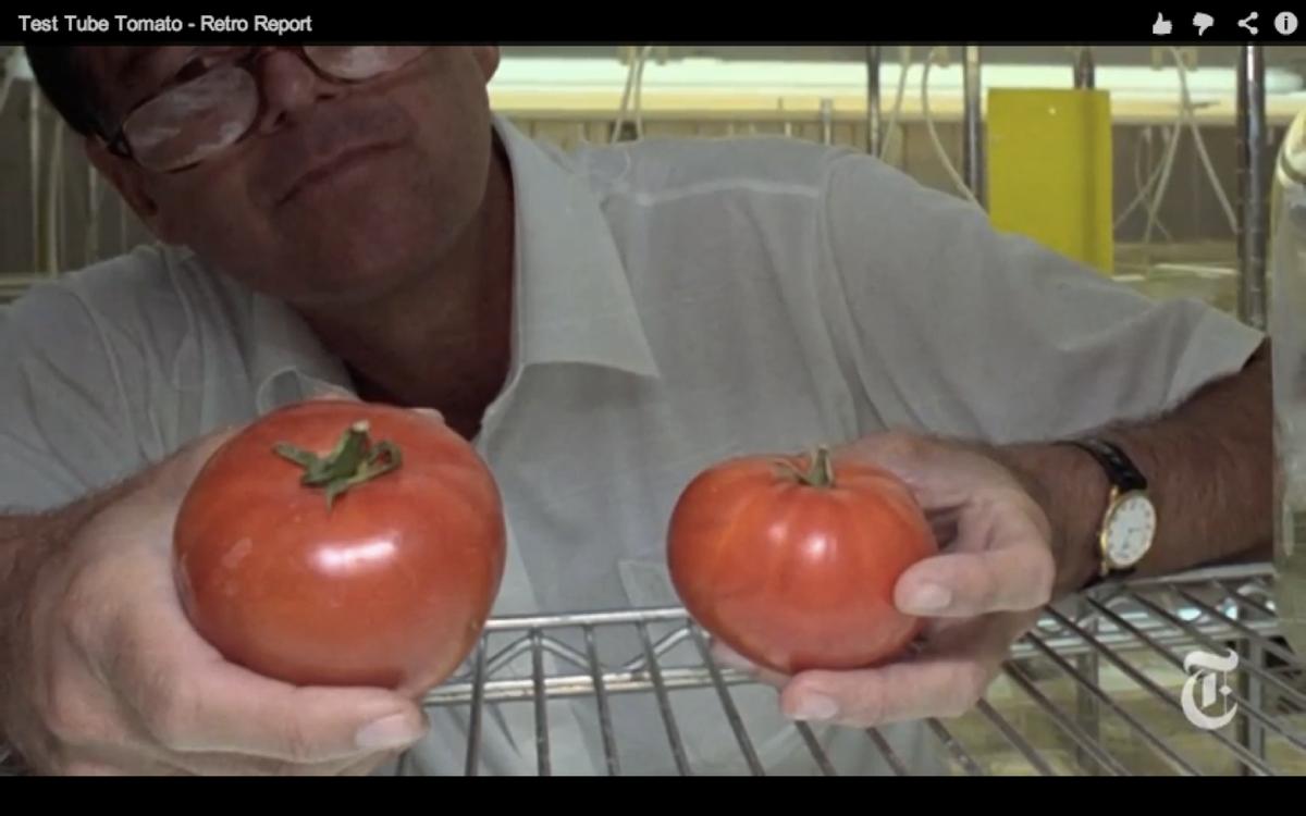 """Scene still from """"Test Tube Tomato"""""""