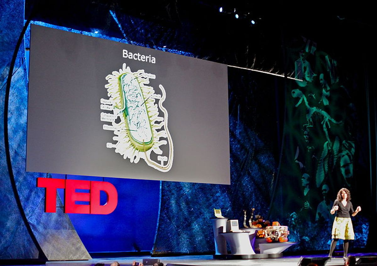 Bonnie Bassler talking at TED (Wikimedia Commons)