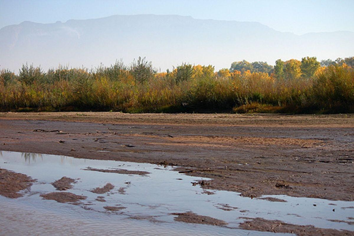 (City of Albuquerque/Flickr)