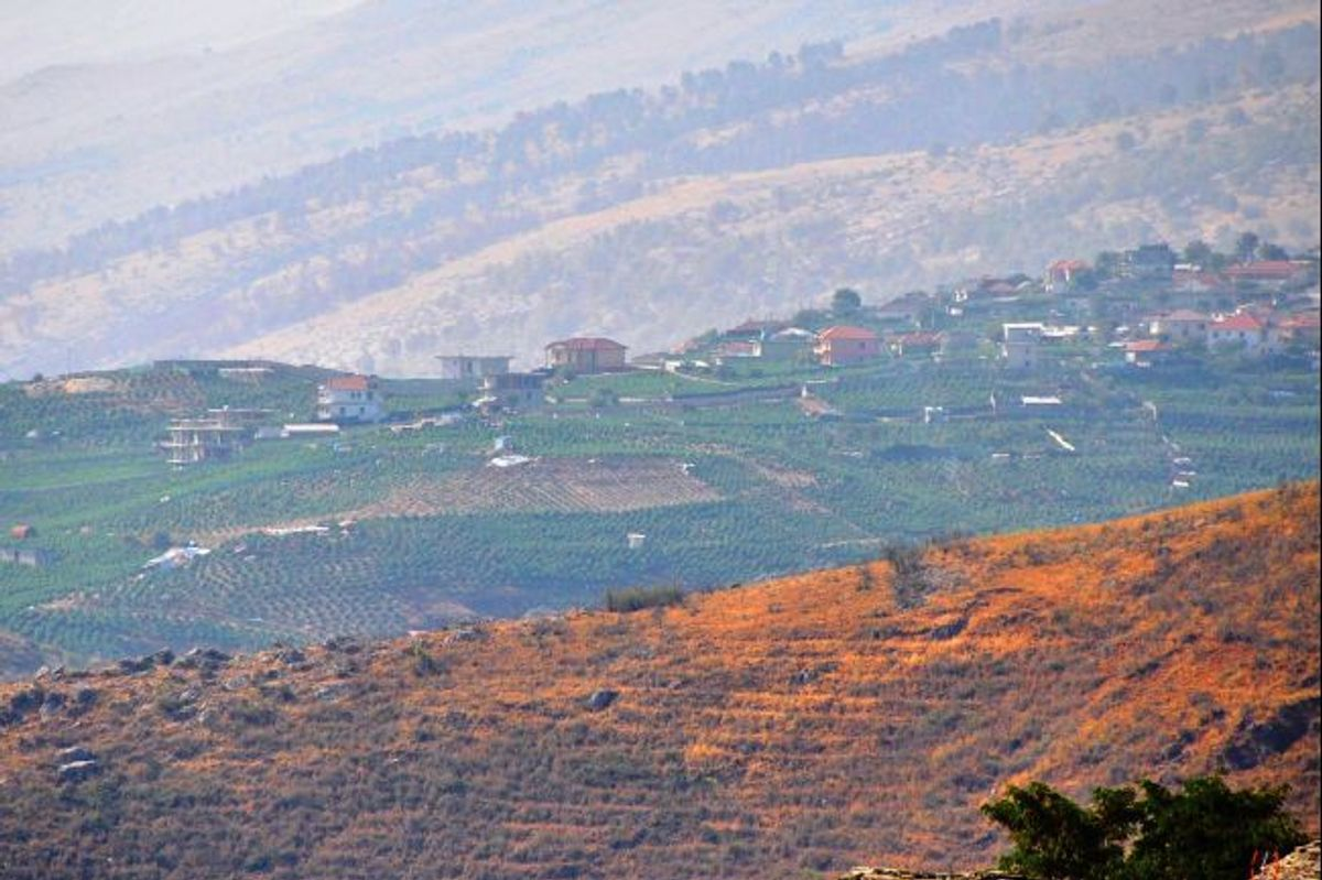 Lush strip of green: Nine-tenths of villagers are believed to take part in marijuana cultivation.  (Besar Likmeta/GlobalPost)