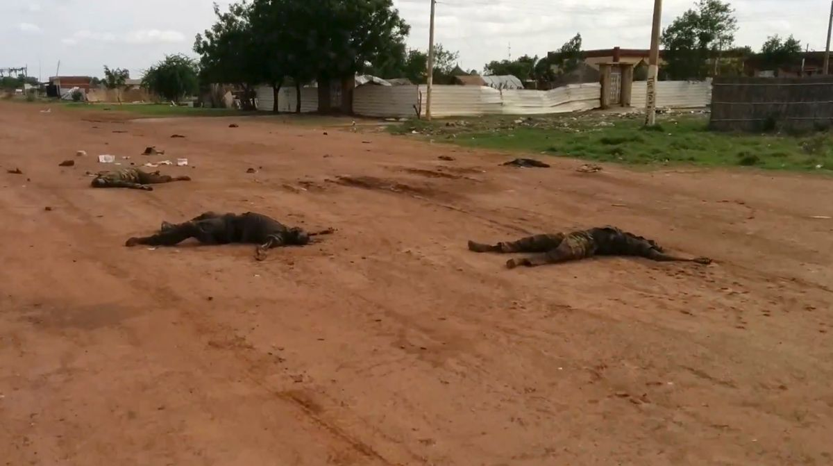 """In this image taken from video, dead bodies lie on the road near Bentiu, South Sudan, on Sunday, April 20, 2014. The United Nations' top humanitarian official in South Sudan, Toby Lanzer, told The Associated Press in a phone interview on Tuesday, April 22, 2014, that the ethnically targeted killings are """"quite possibly a game-changer"""" for a conflict that has been raging since mid-December and that has exposed longstanding ethnic hostilities. There was also a disturbing echo of Rwanda, which is marking the 20th anniversary this month of its genocide that killed 1 million people. (AP Photo/Toby Lanzer, United Nations) (AP)"""