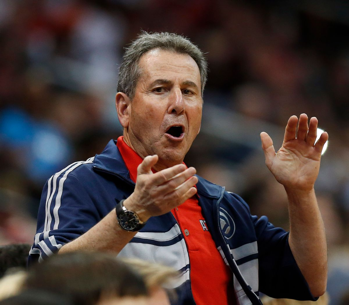 Atlanta Hawks ownership managing partner Bruce Levenson  (Associated Press)