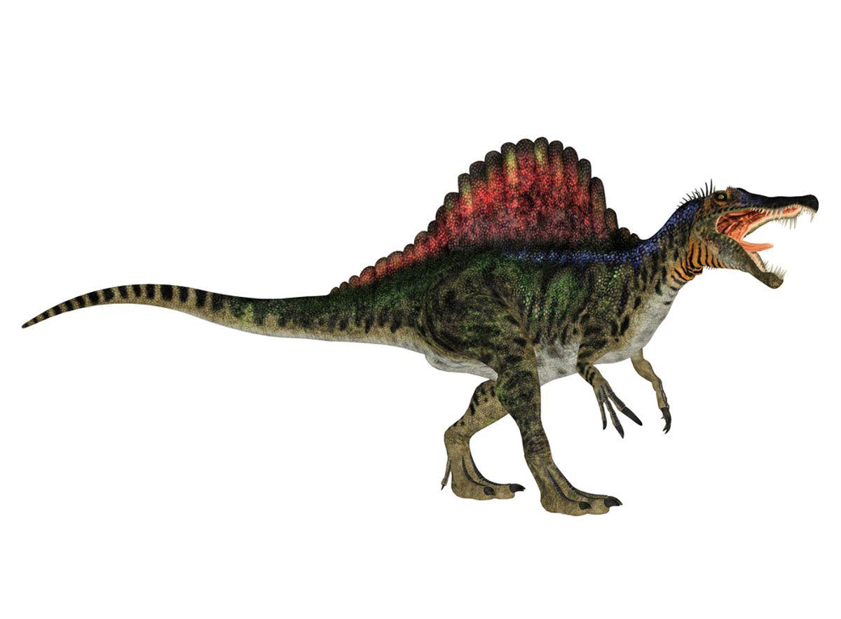 Spinosaurus (<a href='http://www.shutterstock.com/gallery-81948p1.html'>Sofia Santos</a> via <a href='http://www.shutterstock.com/'>Shutterstock</a>)
