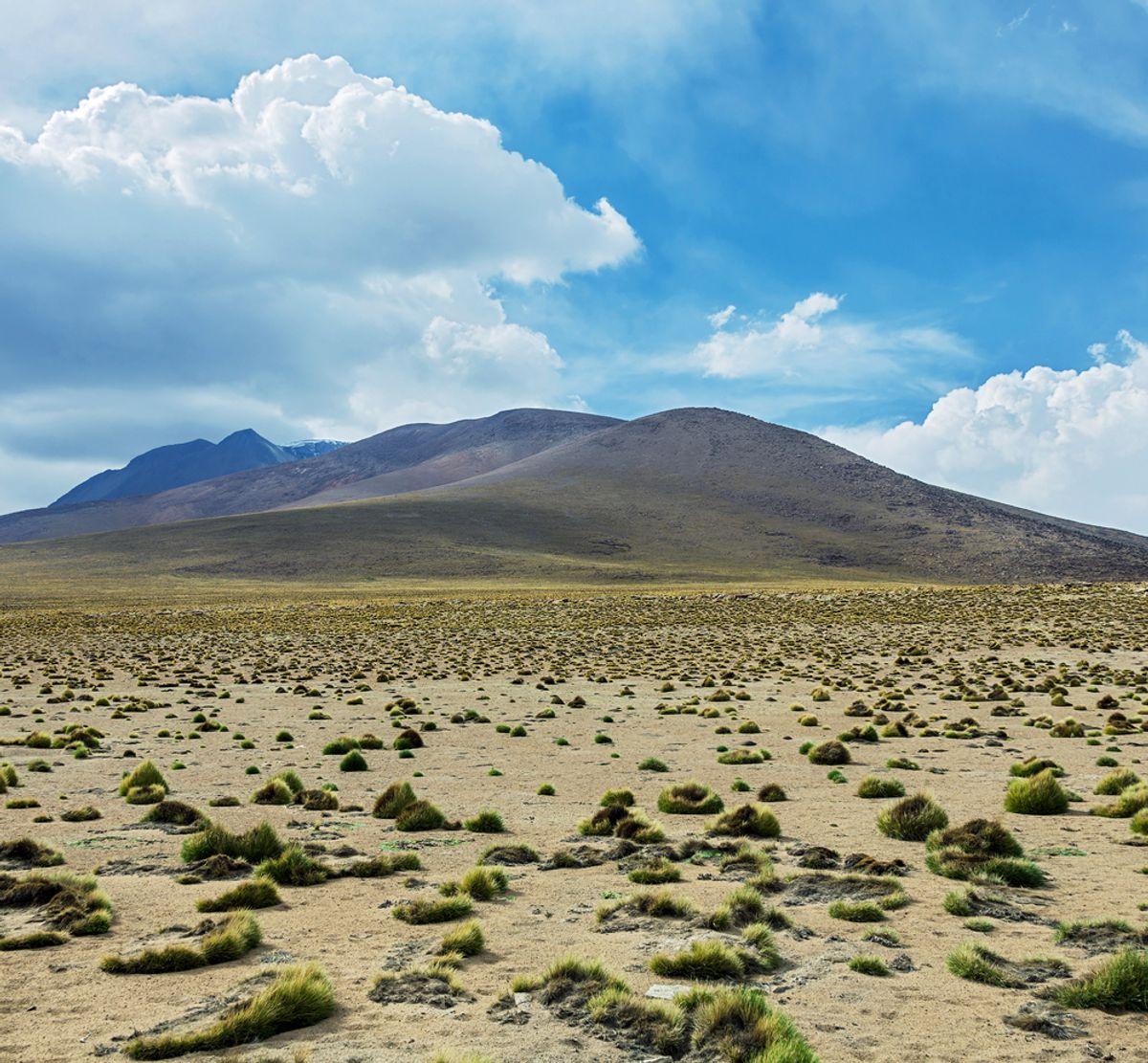 (<a href='url to photographer'>Vadim Petrakov</a> via <a href='http://www.shutterstock.com/'>Shutterstock</a>)