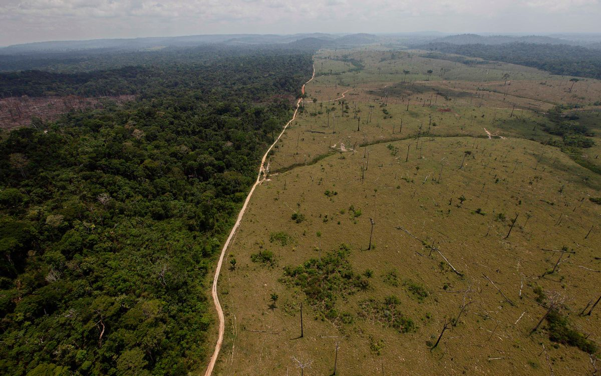 FILE - In this Sept. 15, 2009 file photo, a deforested area is seen near Novo Progresso, in Brazil's northern state of Para. (AP Photo/Andre Penner, file) (AP)