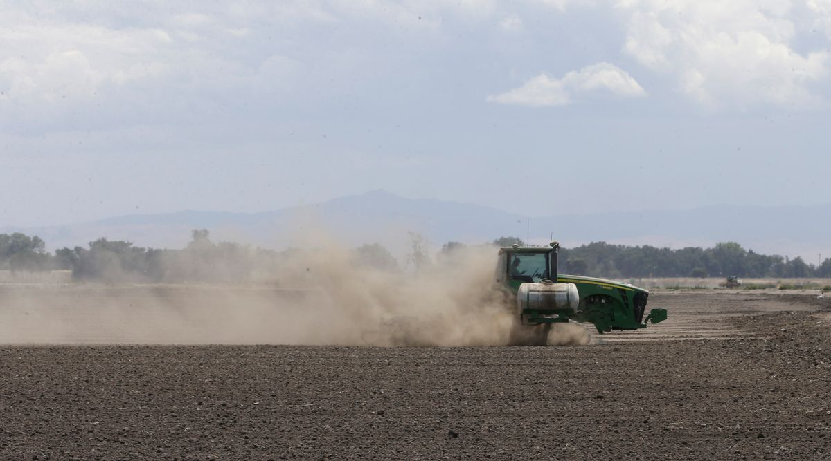 In this photo taken Monday, May 18, 2015, a tractor tills the dry land on the acreage  farmed by Gino Celli, near Stockton, Calif. Celli, who farms 1,500 acres of land and manages another 7,000 acres, has senior water rights and draws irrigation water from the Sacramento-San Joaquin River Delta.  Farmers in the Sacramento-San Joaquin River Delta who have California's oldest water rights are proposing to voluntarily cut their use by 25 percent to avoid the possibility of even harsher restrictions by the state later this summer as the record drought continues. (AP Photo/Rich Pedroncelli)  (AP)