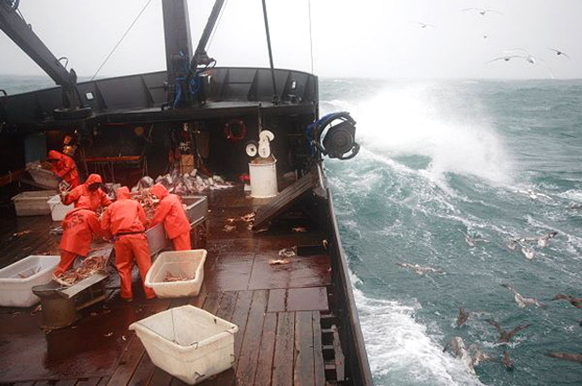 """""""Deadliest Catch""""       (Discovery Channel)"""