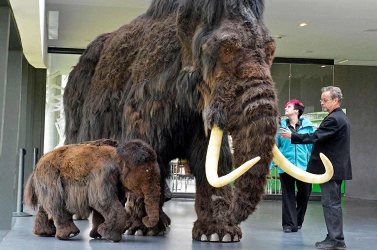 Mammoth reproductions in the visitors' center Ark Nebra in Nebra, Germany, March 29, 2012.       (AP/Jens Meyer)