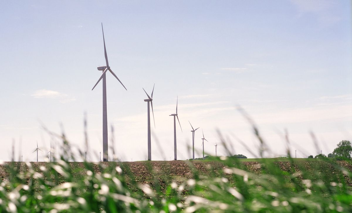 This undated photo made available by Iberdrola Renewables LLC shows wind turbines on a corn and soybean farm in Trimont, Minn. The company will be building a similar commercial-scale wind energy farm near the coast community of Elizabeth City, N.C. (Iberdrola Renewables LLC via AP) (AP)