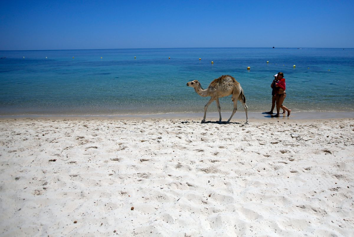FILE - In this June 28, 2015 file photo, tourists and a baby camel walk on a beach in front of the Imperial Marhaba Hotel in Sousse, Tunisia. The blood on the sand has washed away, but the damage wreaked on Tunisia by a few terrifying minutes of gunfire at a beach resort will be deep and lasting. The tourist economy is likely to be gutted: Up to 2 million hotel nights per year are expected to be lost, hastened by warnings from Britain and other European governments last week that their citizens are no longer safe on . (AP Photo/Darko Vojinovic, File) (AP)