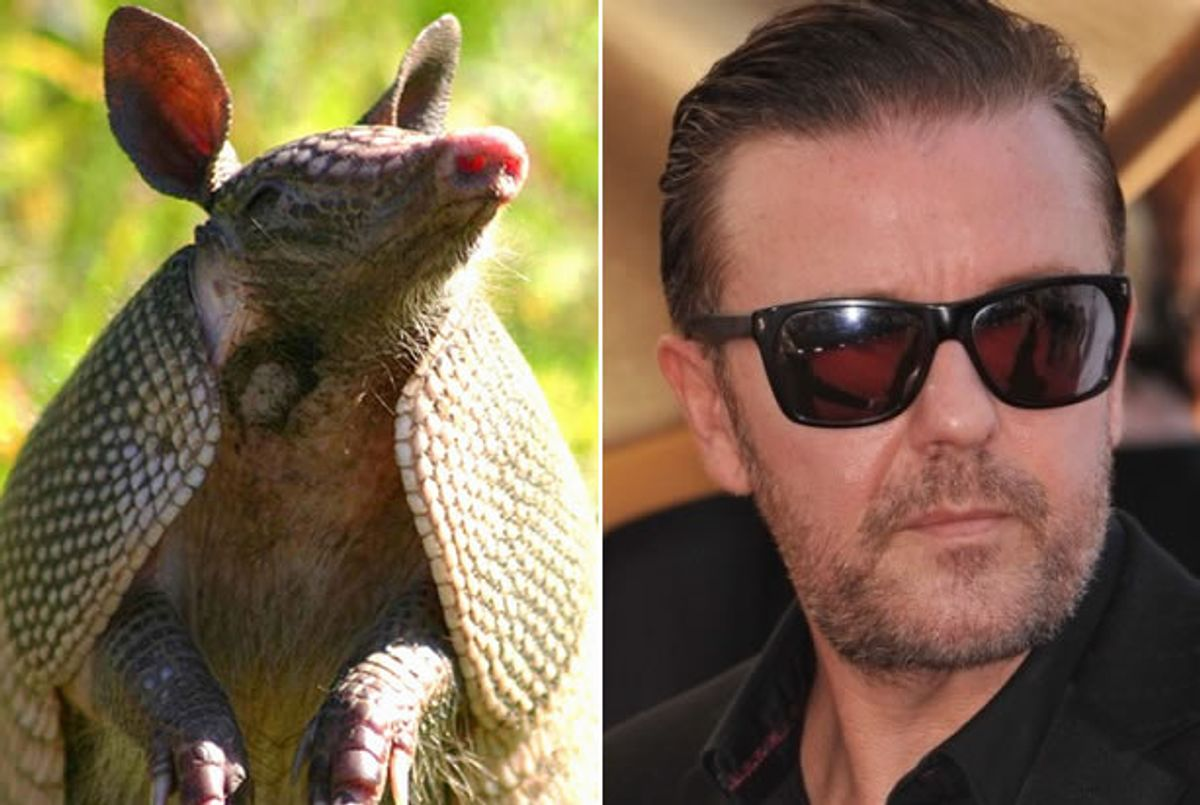 """Armadillo, Ricky Gervais (Credit: <a href=""""https://www.flickr.com/photos/myfwcmedia/12988547315/"""" target=""""_blank"""">Florida Fish and Wildlife/Flickr</a>, <a href=""""http://www.shutterstock.com/gallery-842245p1.html?cr=00&pl=edit-00"""" target=""""_blank"""">Featureflash</a>/<a href=""""http://www.shutterstock.com/?cr=00&pl=edit-00"""" target=""""_blank"""">Shutterstock</a>)"""