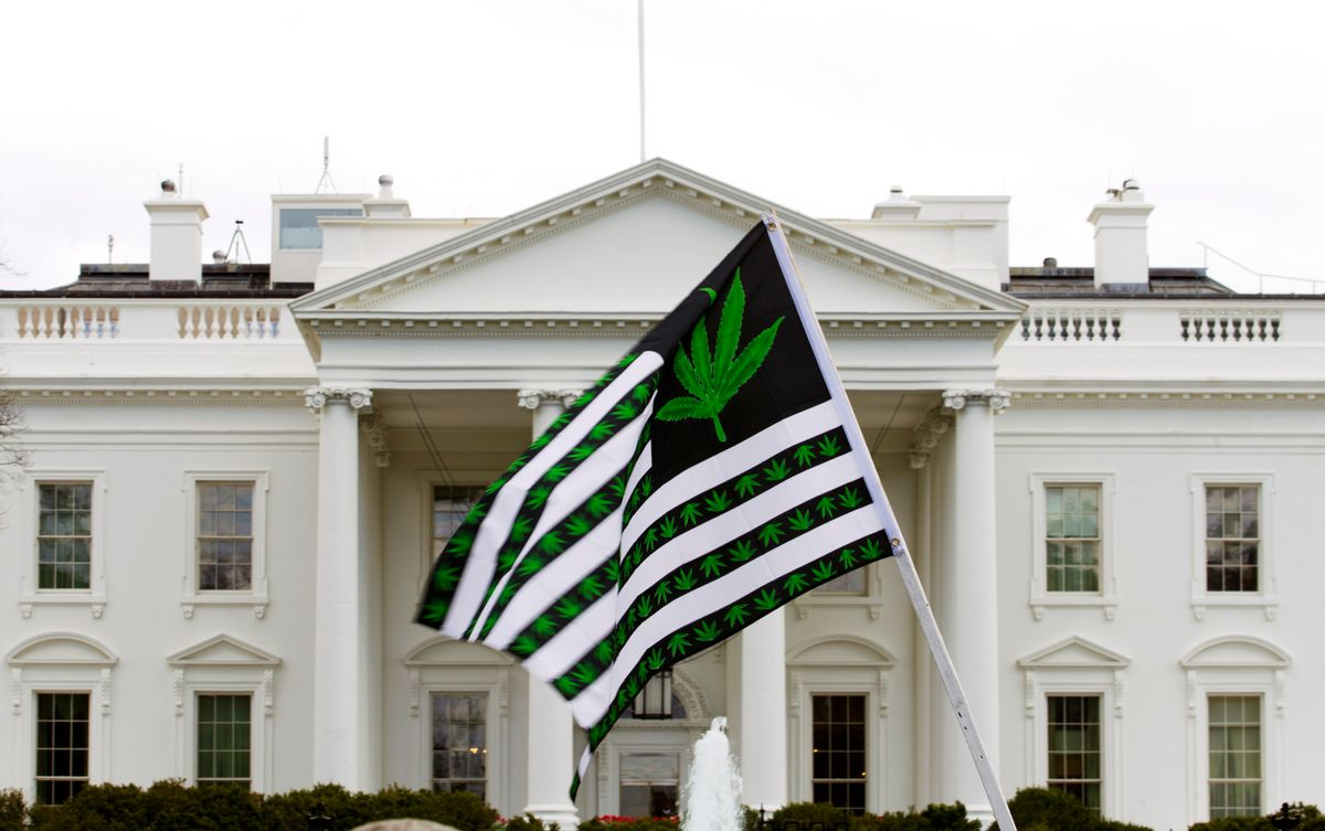 FILE - In this April 2, 2016 file photo, a demonstrator waves a flag with marijuana leaves on it during a protest calling for the legalization of marijuana, outside of the White House in Washington. Six states that allow marijuana use have legal tests for driving while impaired by the drug that have no scientific basis, according to a study by the nation's largest automobile club that calls for scrapping those laws. ( AP Photo/Jose Luis Magana, File) (AP)