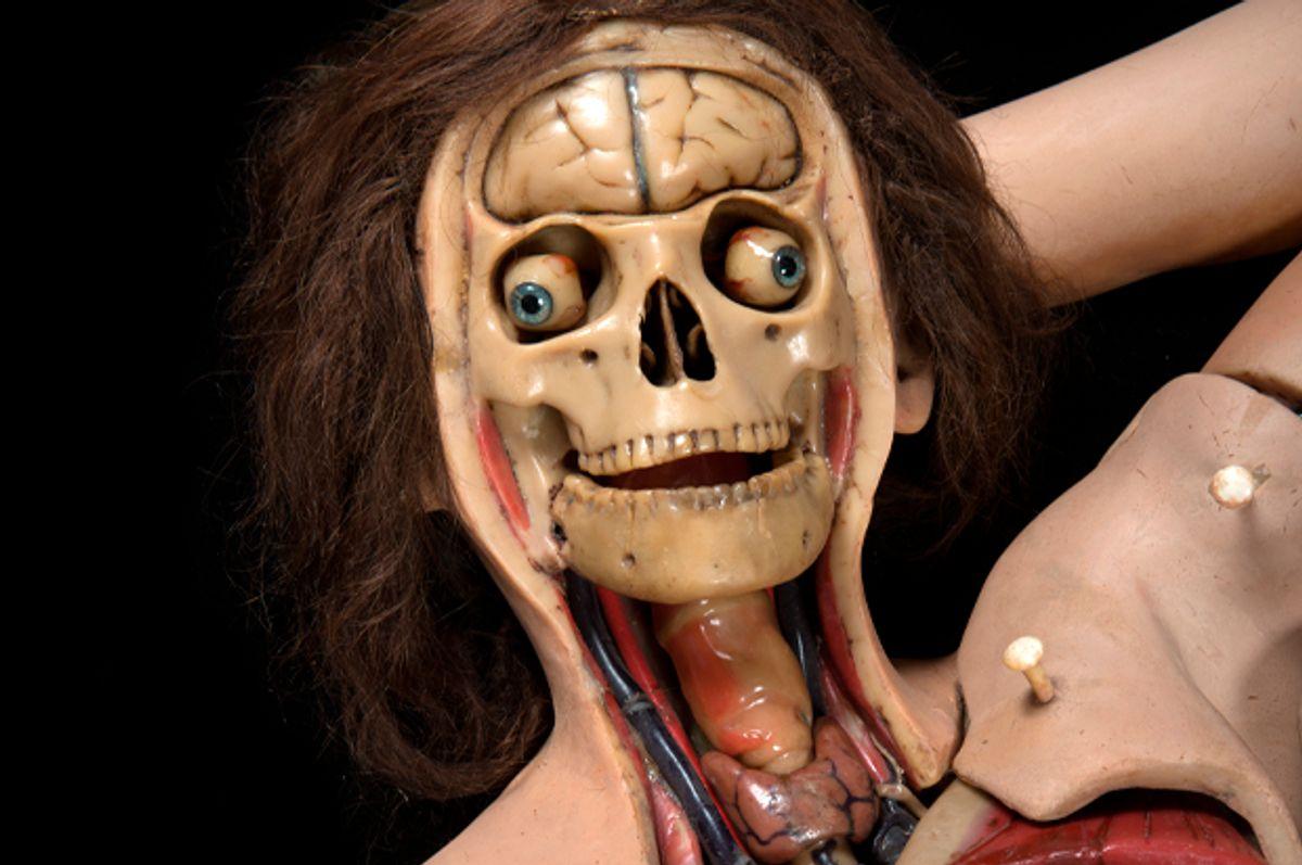 Anatomical Venus model   (DAP Press/Joanna Ebenstein)
