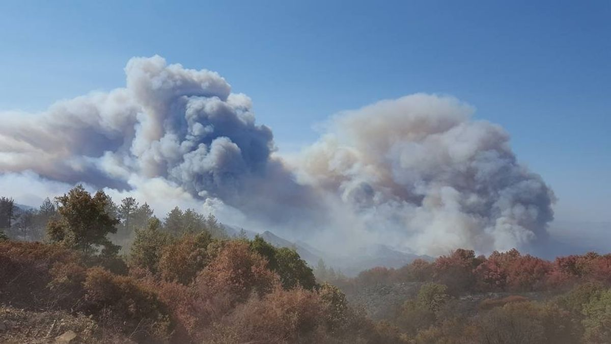 This photo provided by California Department of Forestry and Fire Protection shows smoke billowing from a wildfire near Lake Nacimiento in San Luis Obispo County, Calif., Saturday, Aug. 20, 2016. (California Department of Forestry and Fire Protection via AP) (AP)