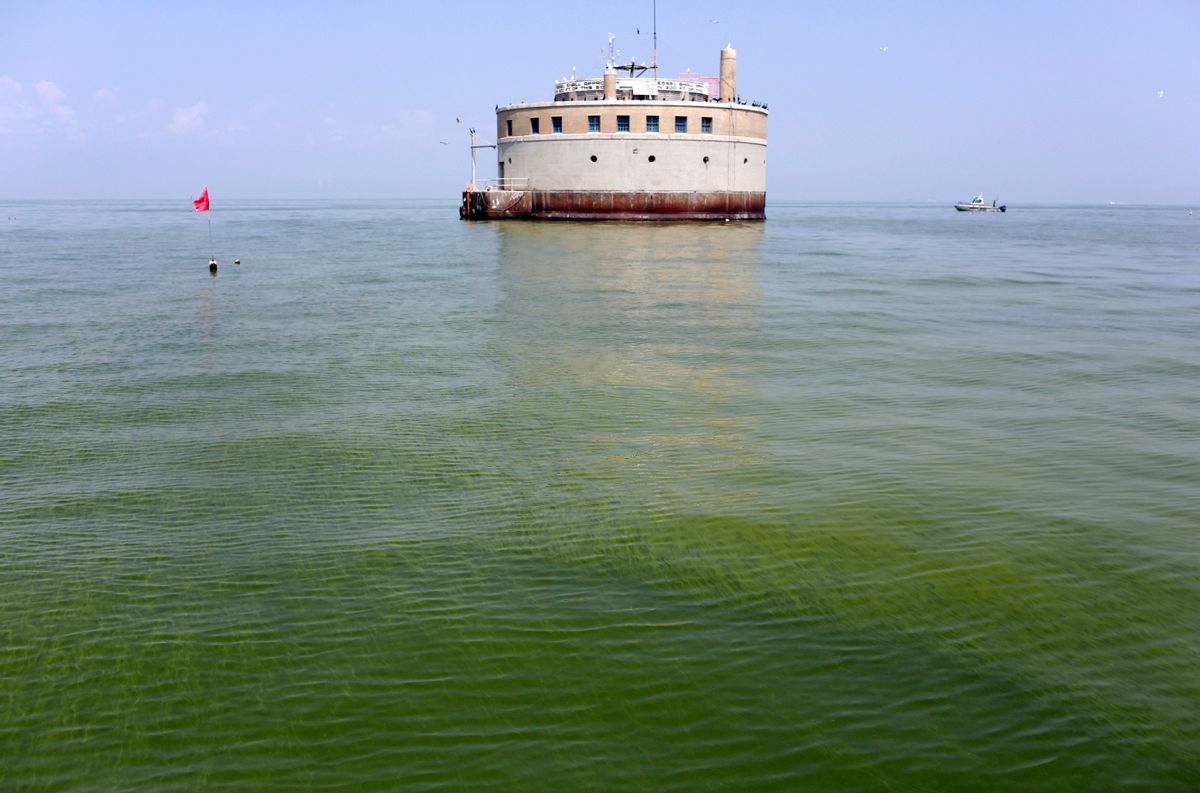 FILE - In this Aug. 3, 2014, file photo, the City of Toledo water intake crib is surrounded by algae in Lake Erie, off the shore of Curtice, Ohio. Groups working to solve Lake Erie's algae outbreaks agree that a key step will be targeting areas that are sending much of the algae-feeding phosphorus into the lake. (AP Photo/Haraz N. Ghanbari, File) (AP)