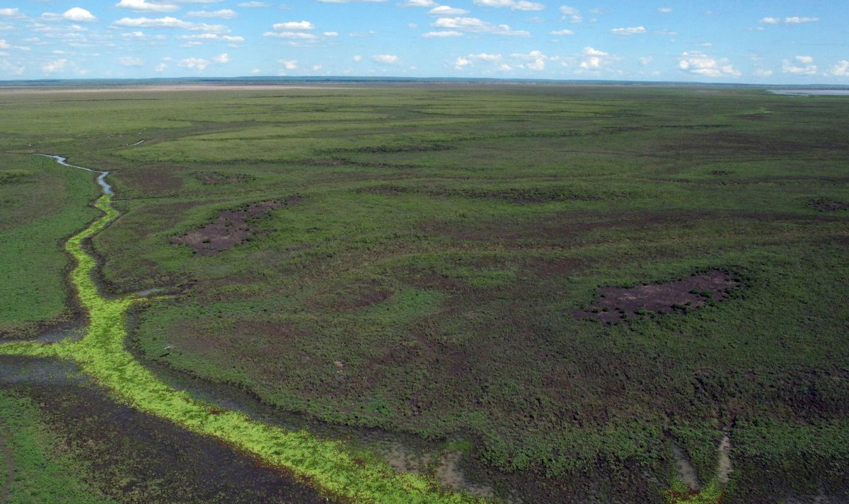 An aerial view shows part of Gorongosa National Park in Mozambique, Wednesday, Nov. 30, 2016, which is one of Africa's richest ecosystems, with forests, grassland, a lake and a mountain. (AP Photo/Christopher Torchia) (AP)