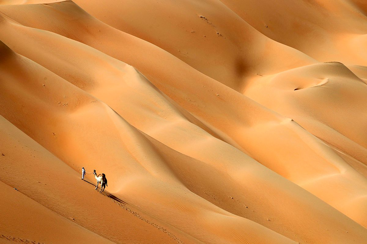 An Emirati man walks with his camels across the Hameem desert, some 170 kilometres west of the Gulf Emirate of Abu Dhabi, on February 24, 2017. / AFP / KARIM SAHIB        (Photo credit should read KARIM SAHIB/AFP/Getty Images) (AFP/Getty Images)