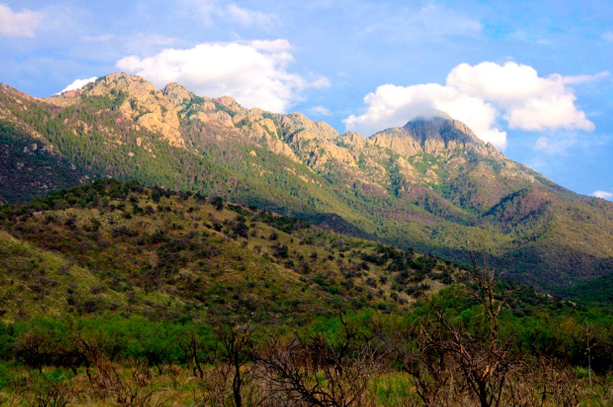 Proposed site in Santa Rita Mountains (Getty/Joesboy)