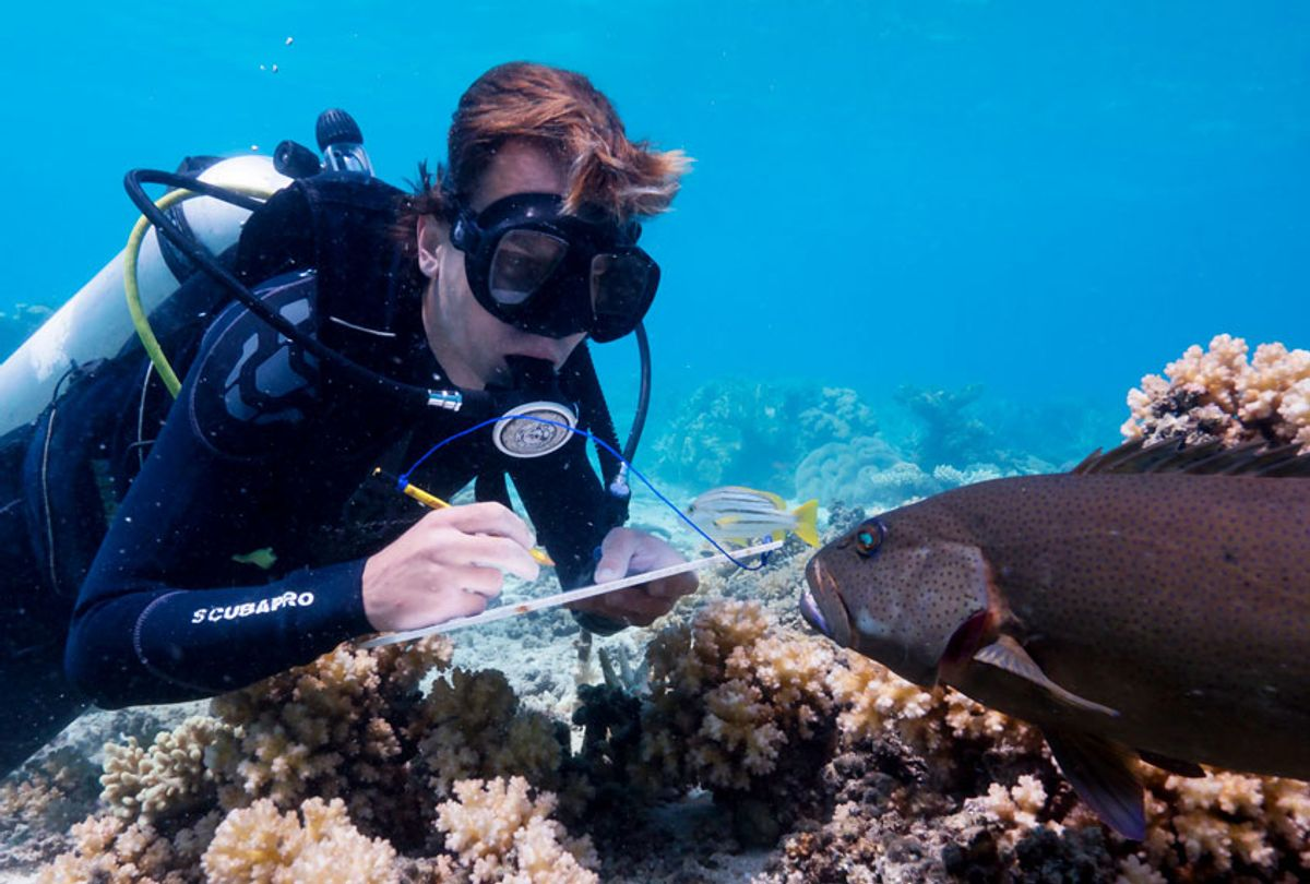 Scientist Alexander Vail in Blue Planet (BBC America/Yoland Bosiger)