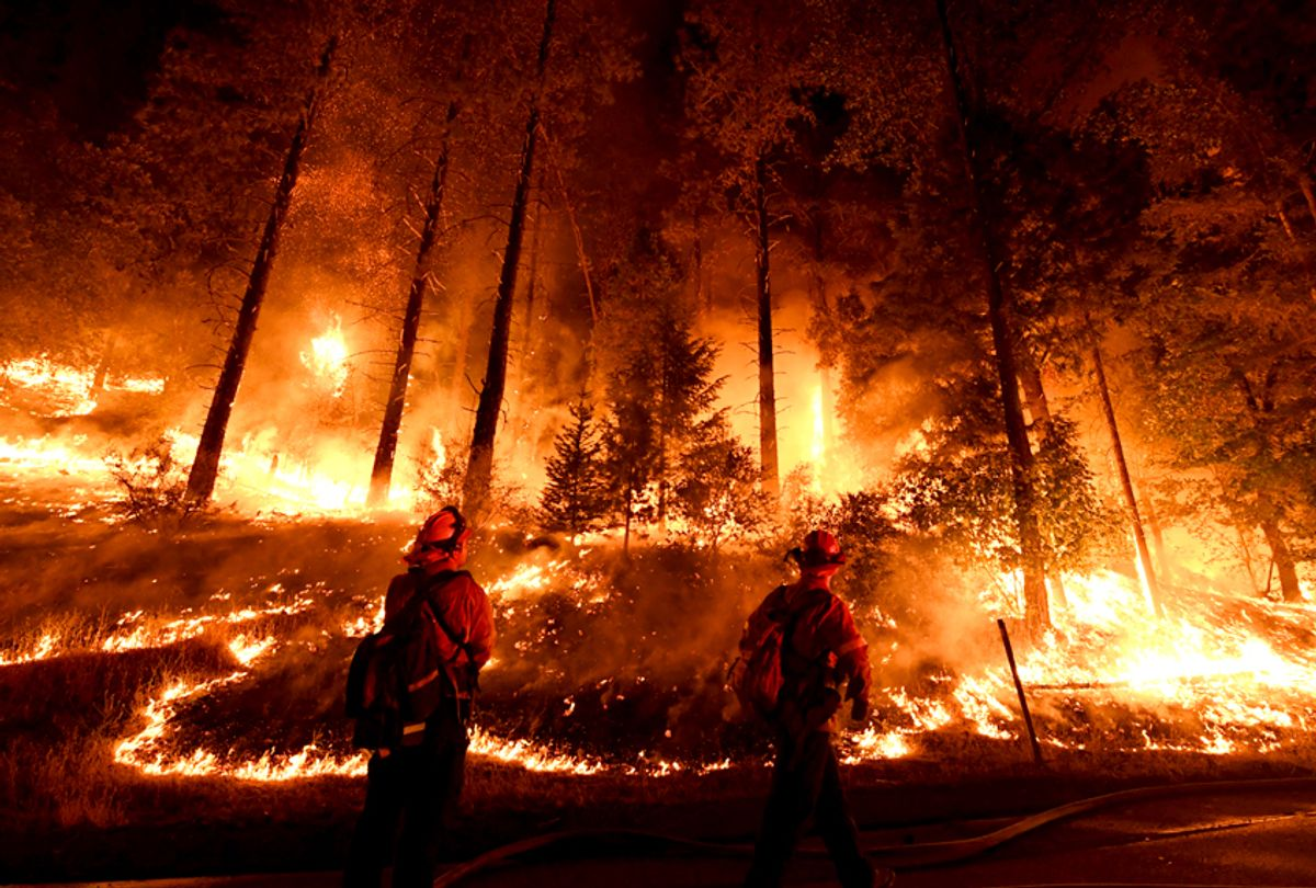 Firefighters try to control a back burn as the Carr fire continues to spread on July 31, 2018.  (Getty/Mark Ralston)
