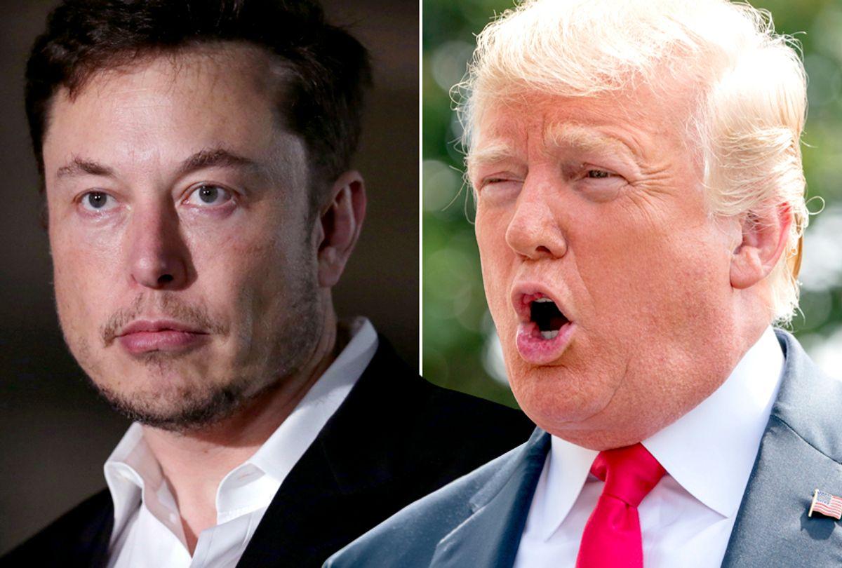 Elon Musk; Donald Trump (AP/Kiichiro Sato/Andrew Harnik)