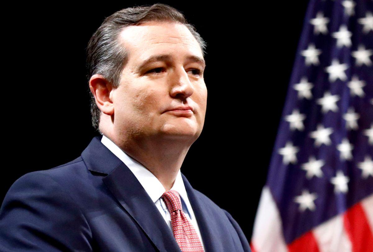 U.S. Senator Ted Cruz (Tom Fox/The Dallas Morning News via AP)