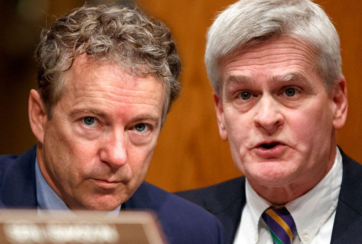 Sen. Rand Paul, R-KY; Sen. Bill Cassidy, D-LA (AP/Salon)