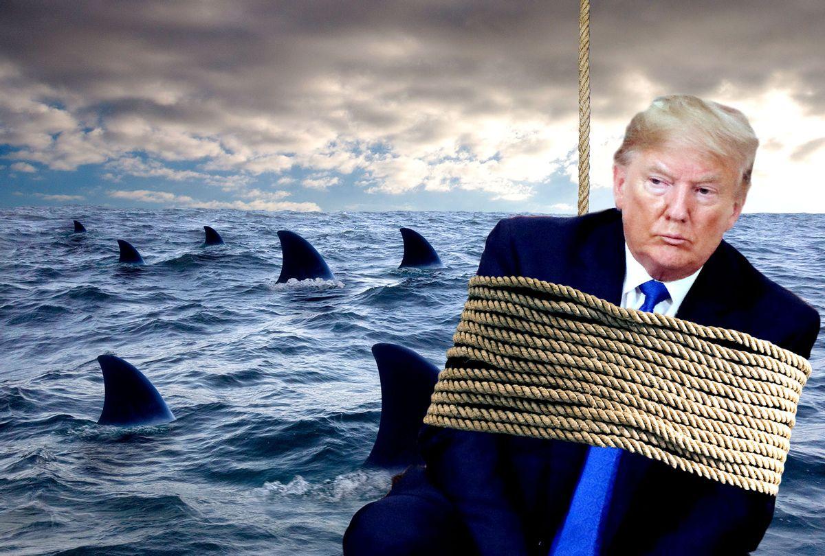 US President Donald Trump (Getty Images/LUDOVIC MARIN/AFP/ Krzysztof Krysiak/ John M Lund Photography Inc/Salon)
