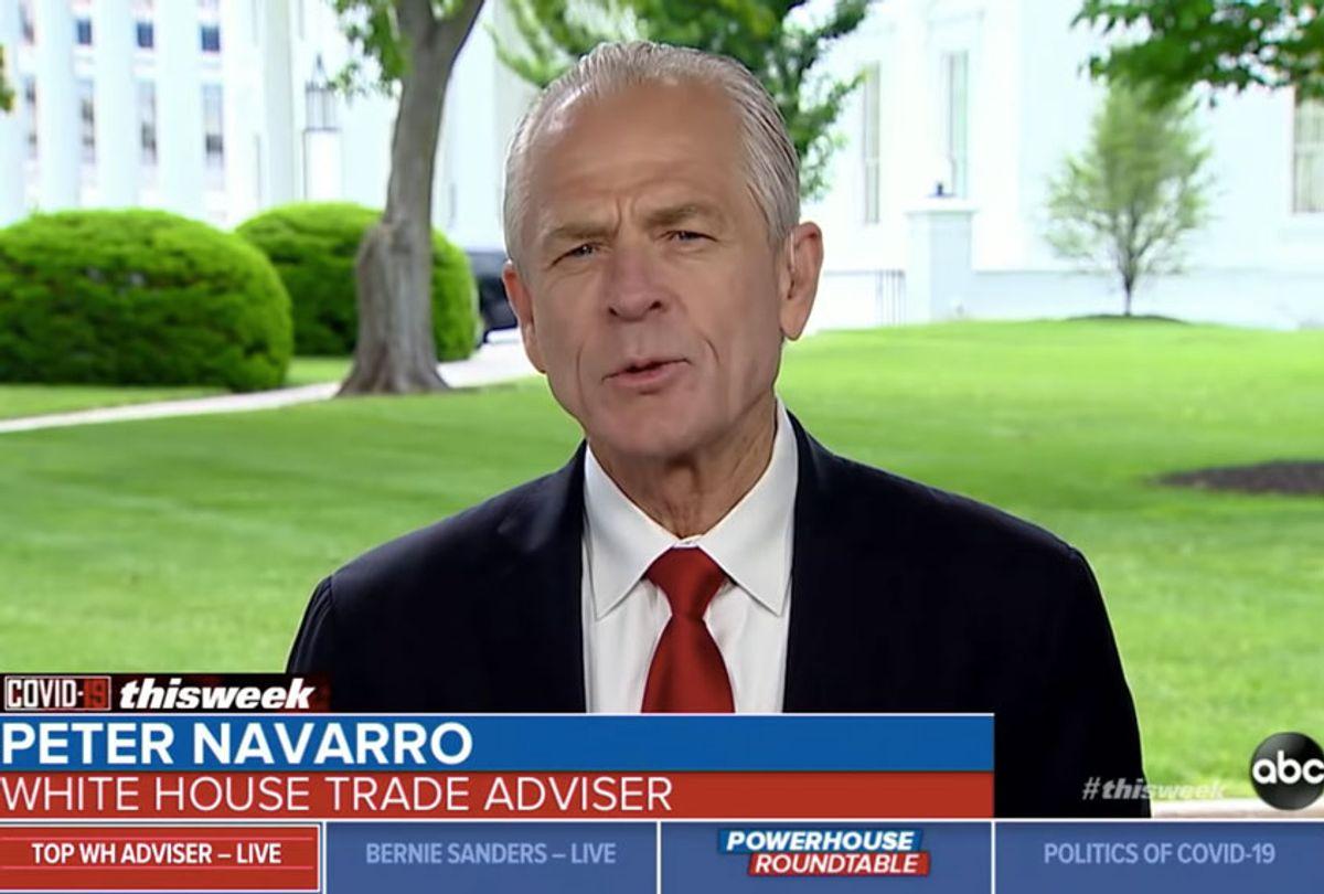 "Peter Navarro on ""This Week."" (ABC)"