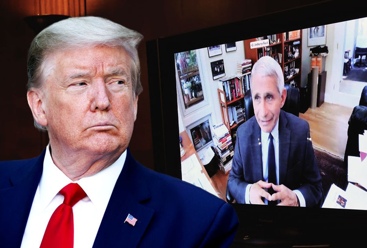 Donald Trump | Dr. Anthony Fauci, director of the National Institute of Allergy and Infectious Diseases, speaks remotely during a virtual Senate Committee for Health, Education, Labor, and Pensions hearing, Tuesday, May 12, 2020 on Capitol Hill in Washington (Win McNamee/Pool/AP/Chip Somodevilla/Getty Images/Salon)