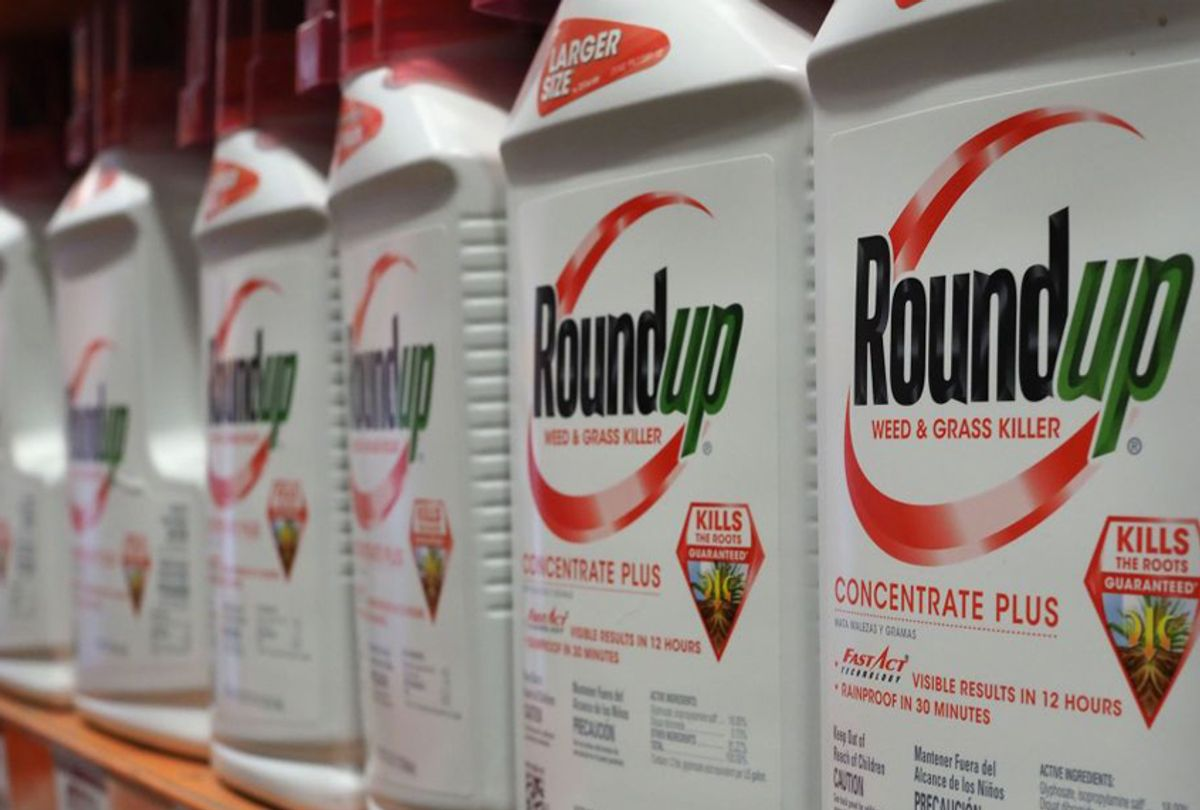Bottles of Monsanto's Roundup are seen for sale June 19, 2018 at a retail store in Glendale, California.  ((ROBYN BECK/AFP via Getty Images))