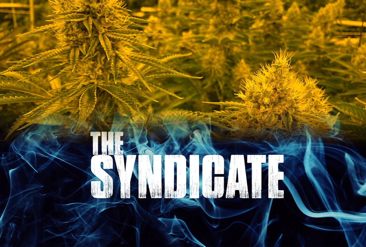 The Syndicate (Photos provided by publicist/Salon)