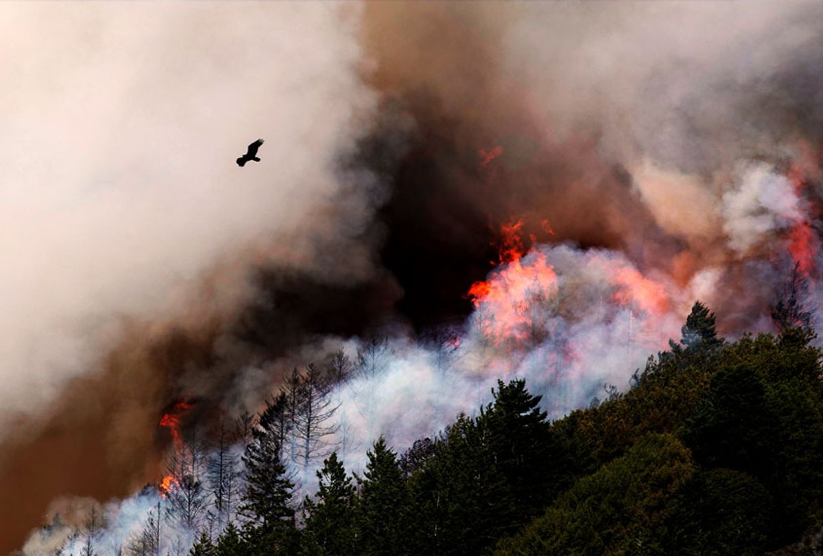 The wildfire spreads on August 19, 2020 in San Mateo, California. (Liu Guanguan/China News Service via Getty Images)